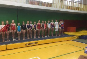 Чемпионат Брянской области по прыжкам на батуте