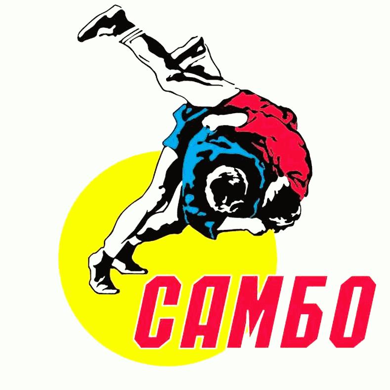 Результаты Чемпионата Брянской области по самбо
