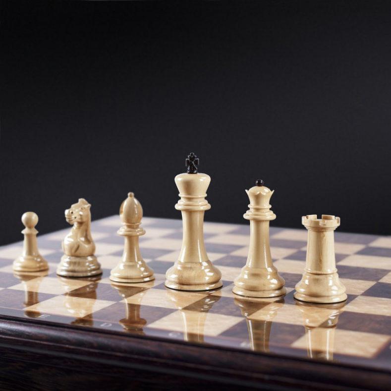 Турнир отборочный к первенству и чемпионату Брянской области по шахматам