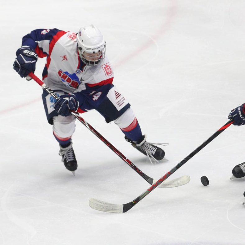 Итоги игр Чемпионата Брянской области по хоккею