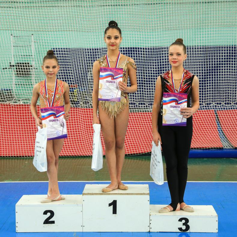 Итоги первенства Брянской области по художественной гимнастике