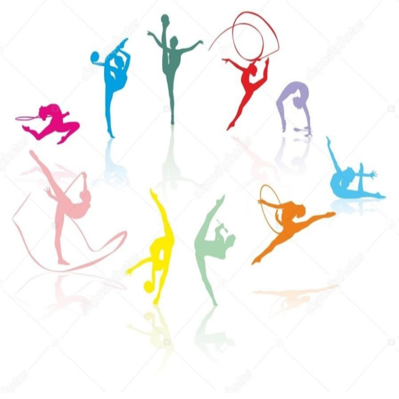 Фестиваль гимнастических видов спорта
